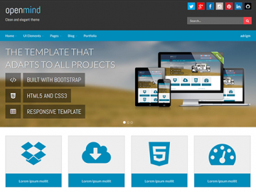 Open Mind - WordPress Customizable Theme