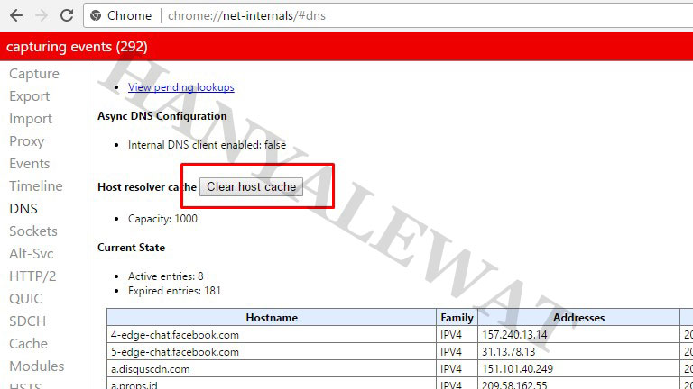 Cara clear cache DNS Chrome